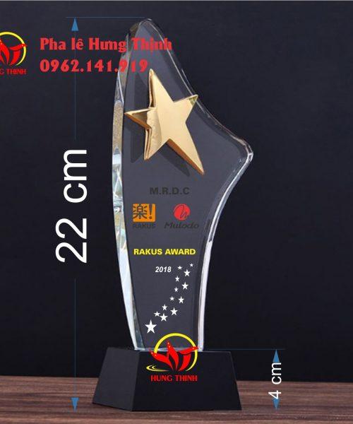 kỷ niệm chương pha lê ngôi sao mẫu 2